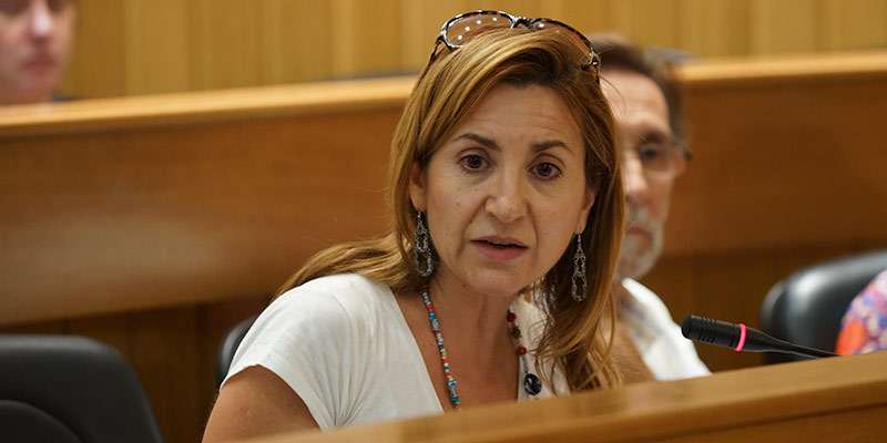 La concejal popular María Villajos durante un pleno